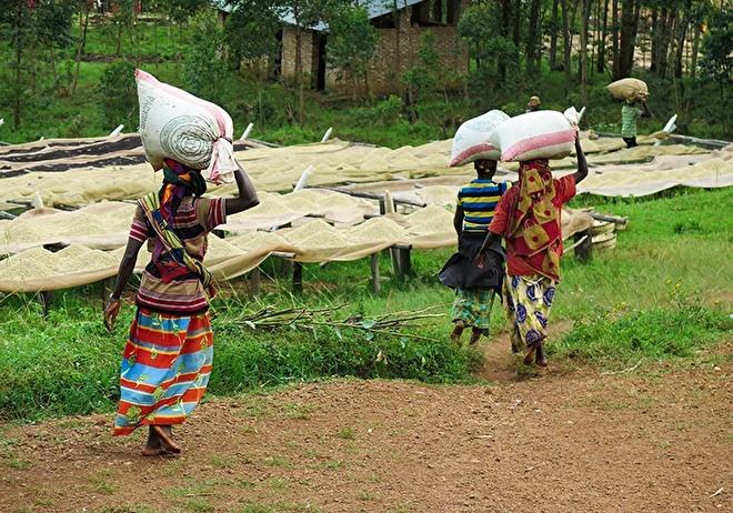 Burundi Karyenda.jpg