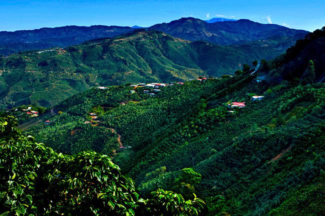 Cota Rica Te...rrazu-valley.jpg