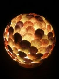Schelpenbol Kleur 30 cm
