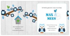 Tweeling Max & Mees