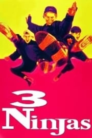 3 Ninjas (1992) Alternatieve titel: Three Ninja Kids