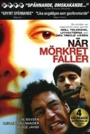 När mörkret faller (2006) When Darkness Falls