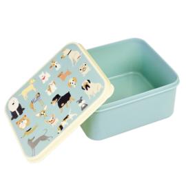 Lunchbox - Honden - Rex London