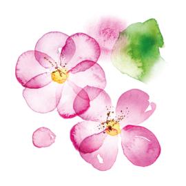Servet - blossom - PPD