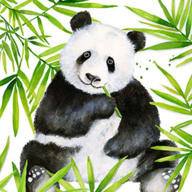 Servet - tropical panda - PPD