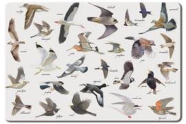Placemat - vogels - Bekking & Blitz