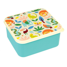 Lunchbox - Wild wonders - Rex London