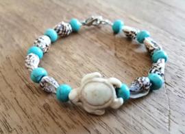 Turtle Turquoise