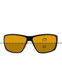 Fortis Eyewear Vista Switch