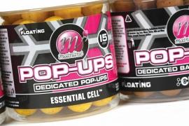 Mainline Pop Up - Essentiele Cell