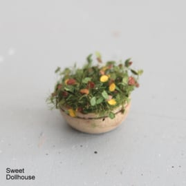 Plant herfst in gebeitst houten kommetje