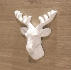 Deer's head white