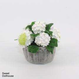 Witte hortensia in mandje