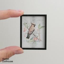 Postertje bird 01