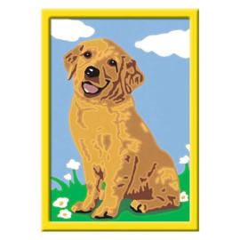 Schilderen op nummer Puppy