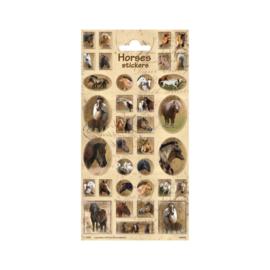 Stickers Paarden Bruin