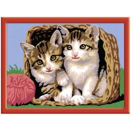 Schilderen op nummer Katjes in een Mand