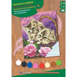Schilderen op nummer Kitten