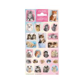 Stickers Schattige Katjes