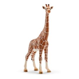 Schleich 14750 Giraf Wijfje