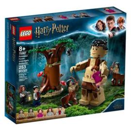 Lego Harry Potter 75967 Het Verboden Bos : Omber's Ontmoeting met Groemp