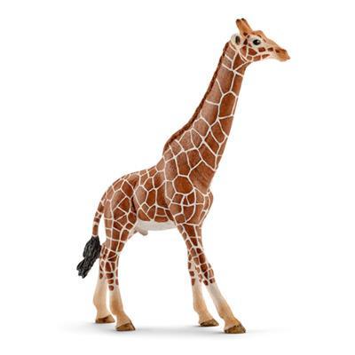 Schleich 14749 Giraf, Bul