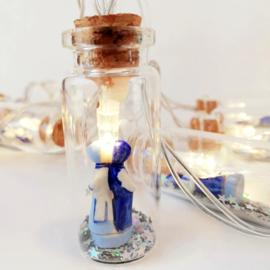 Mini Lights | Flesjes Kussend Paartje