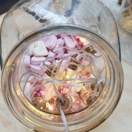 Mini Lights   Flesjes Love   Uitverkocht