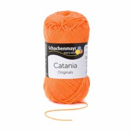 Catania 386 Zalmoranje