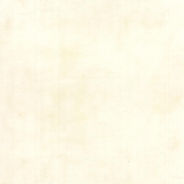 Muslin Flannel 1040-21