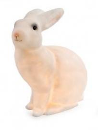 lief wit konijnenlampje