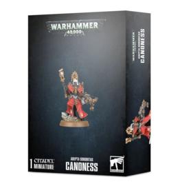 Adeptus Sororitas Canoness (Warhammer 40.000 nieuw)