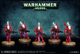 Eldar Wraithguard koopje (Warhammer Nieuw)