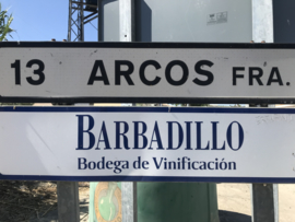 Barbadillo Quãdis joven (€ 11,50)