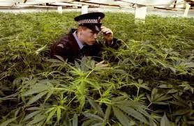 led wetgeving wiet politie.jpg