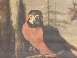Canvas wanddecoratie papegaai