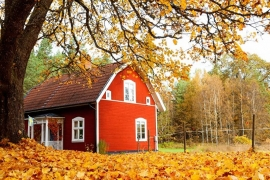 Traditioneel rood