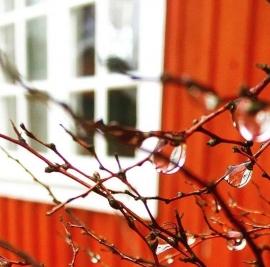 Zweeds rood en wit