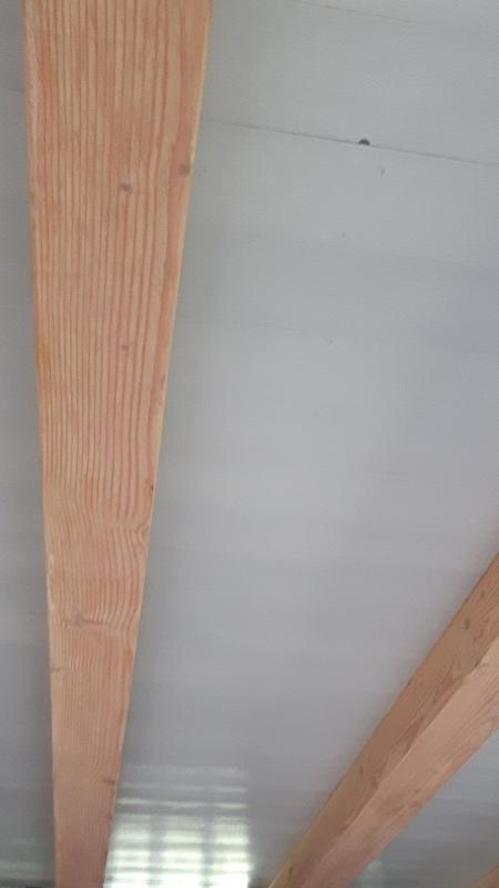 Plafond in licht grijs