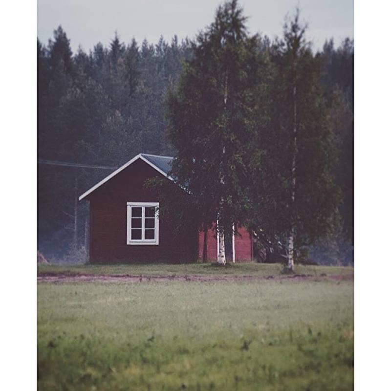Huisje bij het bos