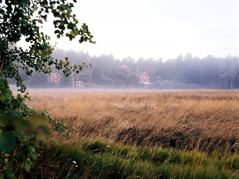 Typisch Zweeds landschap