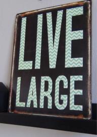 Bord Live large