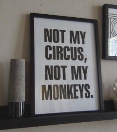 Lijst Not my circus