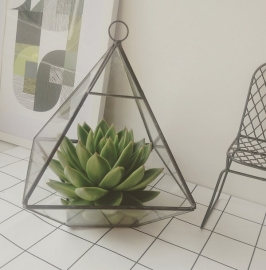 Terrarium Pyramid