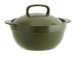 (oven)schaal met deksel, 2 ltr - groen