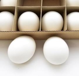 Set van 4 witte kippeneieren