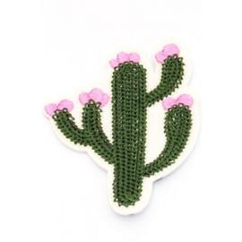 Patch Cactus