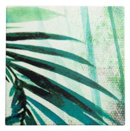 Onderzetter Palmtree