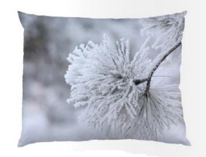 Kussen Snow