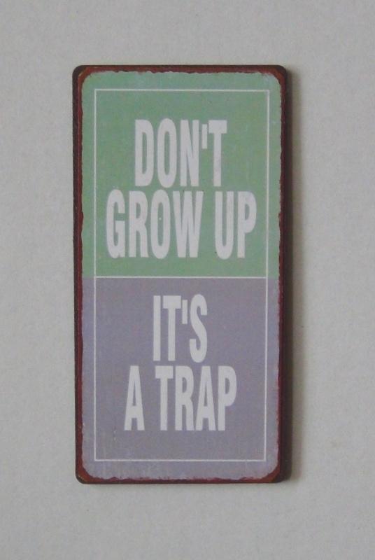 Magneet Don't grow up ...
